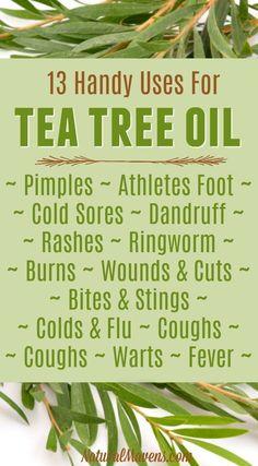 AWAKEN yourself regarding MELALEUCA (Tea Tree) Essential Oil Usage and Benefits