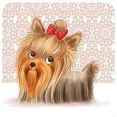 A double dose of Yorkie. This spirited northerner has her long, silky show coat on. Yorkies, Biewer Yorkie, Yorkie Puppy, Animals And Pets, Baby Animals, Cute Animals, Puppy Pictures, Animal Pictures, Dog Signs