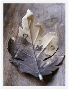 It would be so cool to make a decorative tree with these picture leaves on the branches