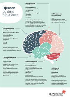 NY hjerne fuld tekst Educational Psychology, Teaching Schools, Anatomy Study, Cooperative Learning, Helping Children, Anti Bullying, Social Stories, Neurology, Aspergers
