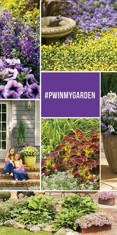 Love the little yellow top right We love to see our plants taking root in gardeners' gardens! Show off YOUR garden with for the chance to win Proven Winners plants for your next season of planting! Love Garden, Dream Garden, Lawn And Garden, Garden Art, Garden Plants, Garden Design, Garden Ideas, Garden Tips, Beautiful Gardens