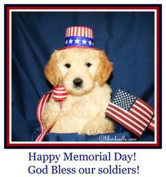 Image result for long memorial day weekend with pups