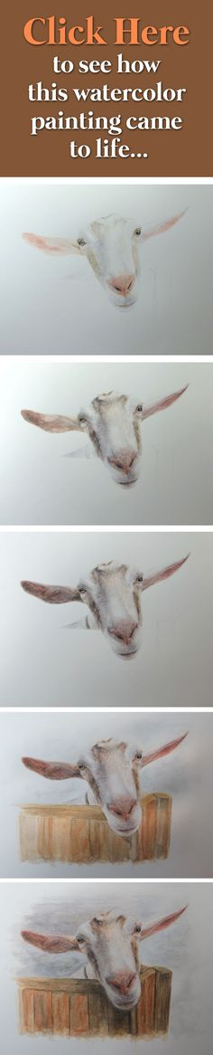 Goat ✿ Tutorial ✿ #Painting More