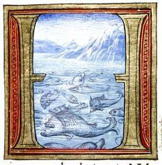 Douce Pliny - Florentine Venice 1476-20