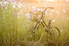 Wire Bicycle by Jayson Olivier on 500px