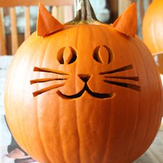 Jack-O-Halloween is one of the most festive and intriguing part of the entire season. Here is a list of easy to carve Halloween pumpkin for 2016 Halloween. Chat Halloween, Halloween Tags, Halloween Pumpkins, Fall Halloween, Halloween Crafts, Halloween 2018, Halloween Pumpkin Designs, Halloween Quotes, Halloween Prop