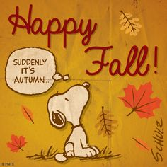 Image result for first weekend of fall