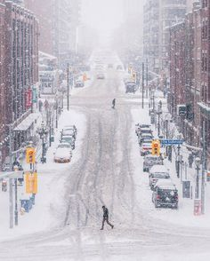 Toronto, 2017 winter - Photo by Aimee Hernandez Toronto Snow, Toronto Winter, Toronto City, Canada, Ontario, Toronto Images, Snow Pictures, Winter Scenery, Snow Scenes
