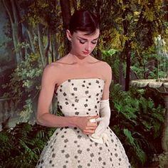 The most classy lady, Audrey Hepburn Audrey Hepburn Photos, Audrey Hepburn Style, 1990 Style, Classy Women, Classy Lady, Celebs, Celebrities, Vintage Beauty, Fashion Vintage