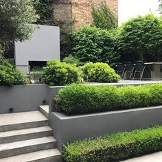 #canalside #garden #layered #hedging #stilllookinggood #threeyearson #charlotterowegardendesign