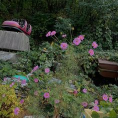 Line Japan, Cute Funny Animals, Yoshi, Stepping Stones, Wallpaper, Garden, Outdoor Decor, Flowers, Plants