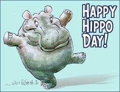 How best to celebrate Hippo day, in that herds of hippopotami are not known to roam the corridors of US 10, 75, 95 or the Tamiami Trail? Description from swampysflorida.com. I searched for this on bing.com/images