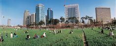 빌딩숲보리밭