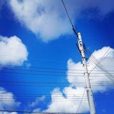 久しぶりの大阪の青空〜☆雨も大切だけど、やっぱり青空は気持ち良いですね