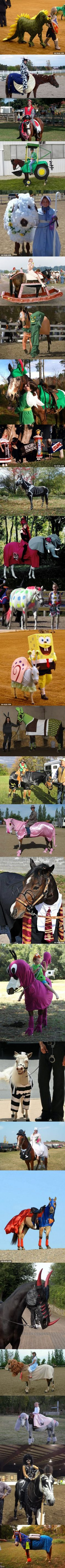 26 Creatively Costumed Horses Who Are Masters Of Disguise. Love these!!!
