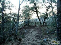 Ruta de #Senderismo Parque Natural de la Font Roja en #Alcoy, #Alicante.