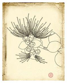 Ohia Lehua  Fine Art Botanical Hawaiian print  8x10 by ArtGarden, $20.00