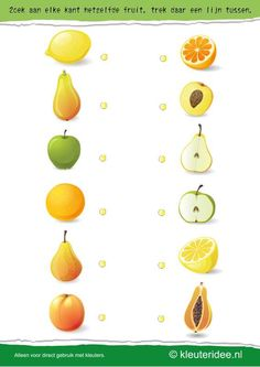 Search on each side the same fruit, kleuteridee.nl, search on each side the same fruit, free printable. Preschool Food, Preschool Printables, Preschool Learning, Teaching Kids, Shapes Worksheets, Kindergarten Math Worksheets, Worksheets For Kids, Montessori Activities, Infant Activities