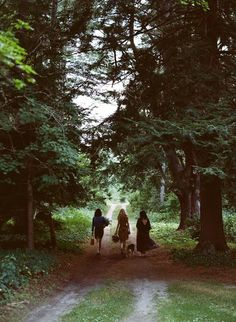 I love photos that tell a story, or that encourage me to invent a story of my own. The three figures, each slightly different, as they walk down the woodland path... What will happen next? (Photographer unknown)
