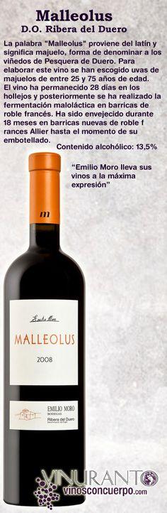 Uno de los grandes vinos de la Ribera del Duero.