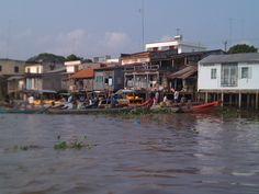Racines et attroupement, Delta du Mékong