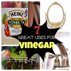 Ducks 'n a Row: 7 Great Vinegar Cleaning Tips For Around the House