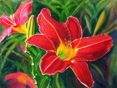 Red Daylily Art Watercolor Original Painting by by CathyHillegas, $625.00
