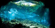 Los 21 escenarios naturales más espectaculares de México: Cenotes de Yucatán | México Desconocido