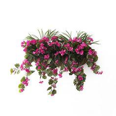 Balconnière Géraniums Roses avec verdure 28
