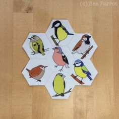 Spring garden birds hexie flower made using my original fabric designs. The cotton fabric is suitable for all types of crafts including patchwork and epp. Available from the Sea Parrot online Folksy shop or contact Sea Parrot.
