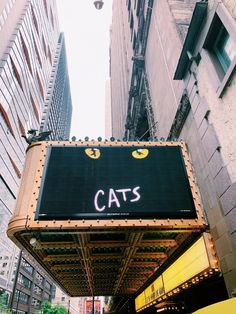 What I'm Looking Forward To This Summer - Simply Sinova Cats Broadway in Chicago Broadway Musicals, Broadway Nyc, Broadway Plays, Broadway Shows, Cats Musical, Musical Theatre, Glee, Empire Ottoman, Couples Comics