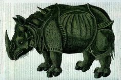 #Rhinocéros noir (Diceros bicornis) vit en Afrique. Avec une hauteur au garrot de 1,60 m et une masse de 800 à 1500 kg, il peut atteindre les 3,50 mètres de longueur. #Animal plutôt solitaire, il est actif principalement au crépuscule et la nuit. La journée, il dort à l'ombre ou prend des bains de boue #numelyo #bestiaire #pachyderme