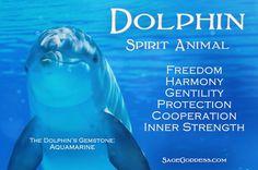Dolphin totem