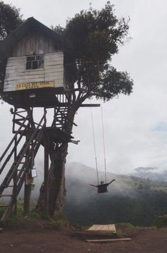 Swinging at a height! An adorable adult tree house and swing with amazing scenery to admire