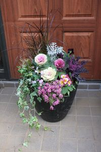 ハボタン寄植え Flower Pot Crafts, Flower Pots, Container Gardening, Gardening Tips, Fall Containers, Floral Arrangements, Exterior, Plants, Pictures