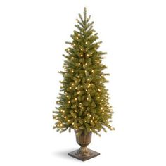 National Tree PEJF1-327-40 4' Poly Jersey Fraser Fir Entrance Tree in Dark Bronze Plastic Pot with 100 Clear Lights-UL