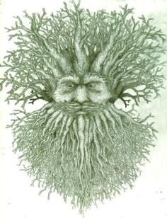 SciFi and Fantasy Art Treebeard, green man style by David Eagleton Holly King, Sculpture Head, Tree Artwork, Fantasy Forest, Nature Spirits, Celtic Art, Fantastic Art, Awesome, Woodland Creatures
