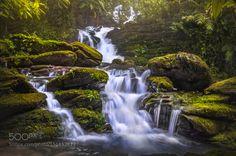 Jungle Waterfall by LuisLyons  landscape forest water jungle stones rocks beautiful green waterfall mood stream flow moss rainfores