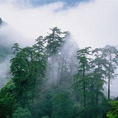Dongjian Hunan