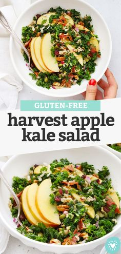 """Harvest Apple Kale Salad With Balsamic Dressing - This yummy fall kale salad has sweet apples, crunchy nuts, and a tangy balsamic dressing that's perfect to tie everything together. Don't miss our """"secret"""" tricks for the best kale salad! (Gluten-Free, Vegan-Friendly) // Fall Kale Salad // Apple Kale Salad Recipe // Harvest Kale Salad // Fall Salad #healthylunch #kalesalad #healthylunch #applerecipes"""