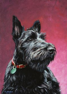 Scottish Terrier I want one named Shock off of Lady and the Tramp :)