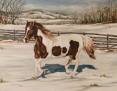 Winter Horse 16x 20 Original Oil Painting by by MacMurrayDesigns, $1500.00