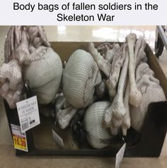 GRAPHIC - Body bags of fallen soldiers in the Skeleton War