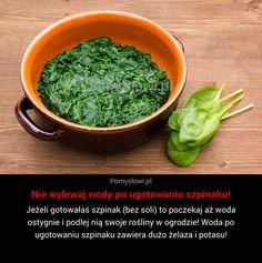 Jeżeli gotowałaś szpinak (bez soli) to poczekaj aż woda ostygnie i podlej nią swoje rośliny w ogrodzie! Woda po ugotowaniu ...
