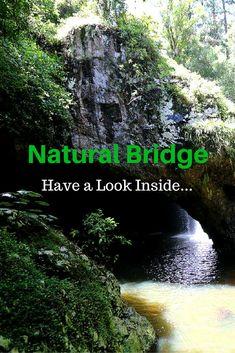 Natural Bridge in Springbrook National Park, Queensland Australia