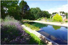 Clear Water Revival Natural Pool Making A Natural Swimming Pool