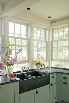 Yes! Give me ALL the windows & an apron-front sink.