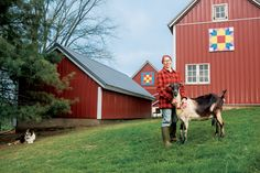 Dairy Goats' Growing Role in Wisconsin Agriculture via Farm Flavor #farming