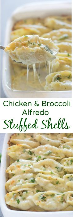 Chicken and Broccoli Alfredo Stuffed Shells include tender pasta shells… Chicken and Broccoli Alfredo Stuffed Shells include tender pasta shells filled with a cheesy shredded chicken and broccoli mixture and smothered in an easy homemade alfredo sauce.