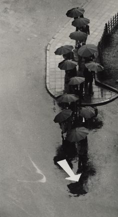 André Kertész Some people need to follow the crowd even when the Universe sends they another message....